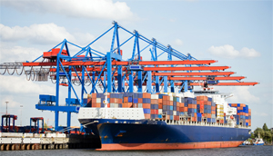 MSP Project - bulk shipping